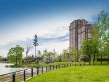养老地产项目规划设计的精细化研究
